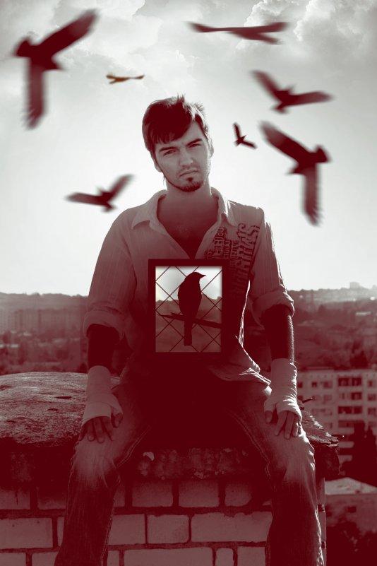 Freedom - Алексей Бондаревич