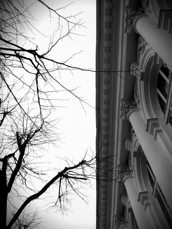Черно-белое - Кристина Кеннетт
