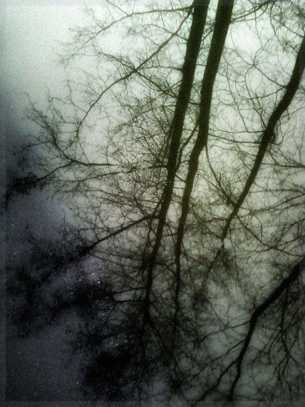 Отражение в луже после дождя - Кристина Кеннетт