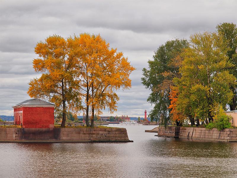 Осень в кронштадте максим судаков