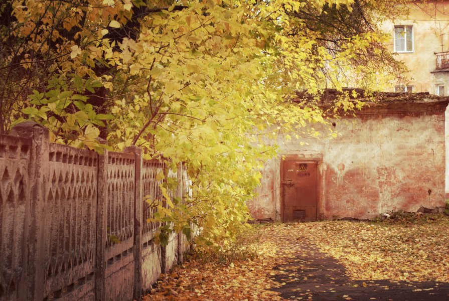 один грустный день из Осени.......... - Снежанна Снежка