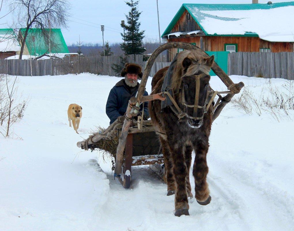Русская зима) - Регина Богомолова