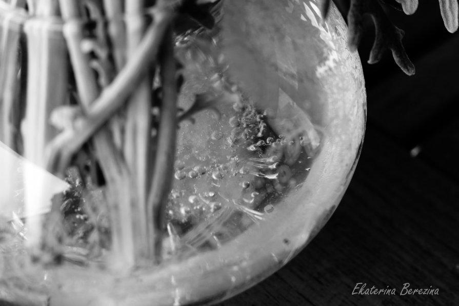 В октябре лед даже в вазе с цветами - Екатерина Березина