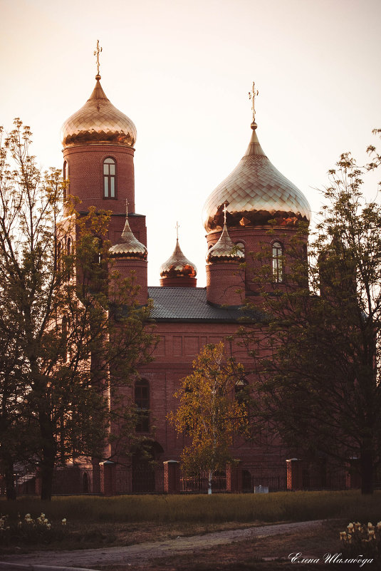 Свято-Дмитриевский храм - Елена Багрий