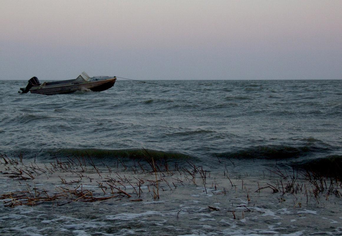 геническ купить сети рыболовные