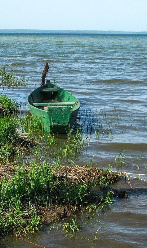 лодка качается на волнах распространяющихся со скоростью 2.5 м с определите