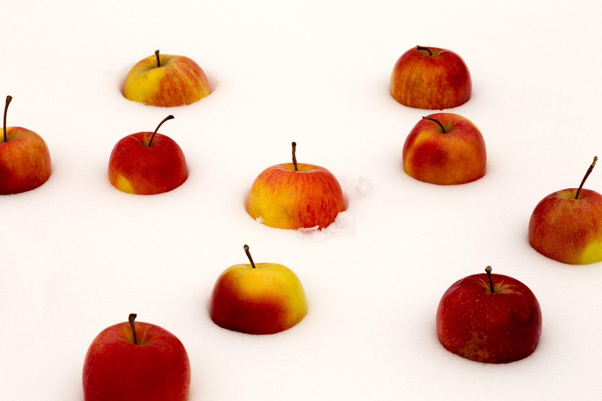 Яблоки на снегу.... - Светлана Шаповалова