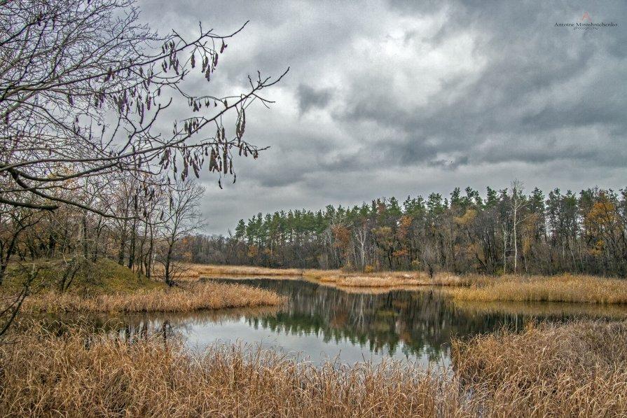 Осень в Новомосковске - Антуан Мирошниченко