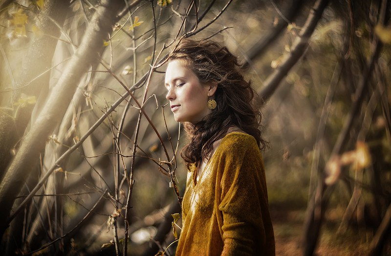 spirit of the forest - Maksim Serikow