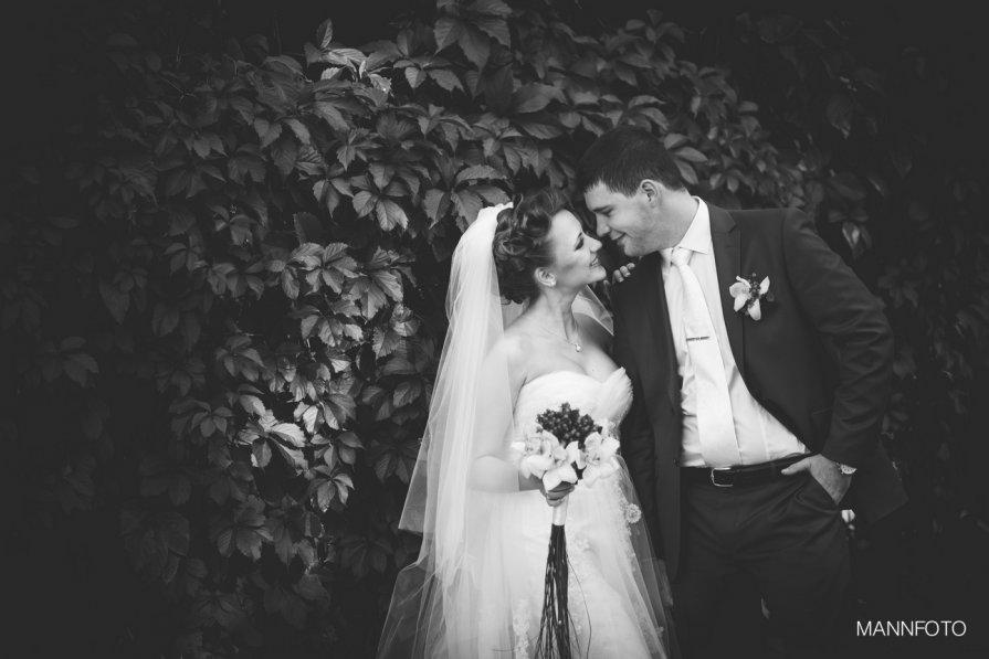 Свадьба - Андрей Онищенко