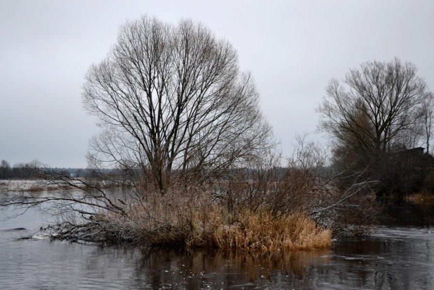 Островок на реке - Светлана Ульянова