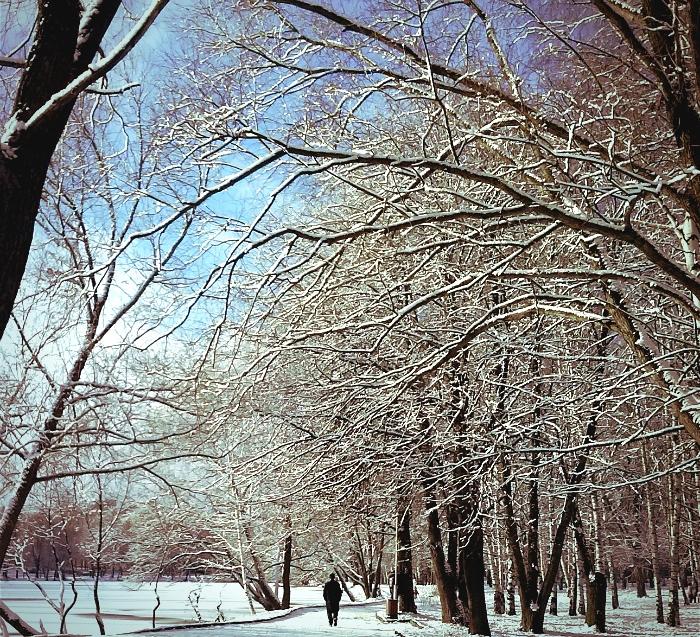 Утро в парке - Кристина Кеннетт