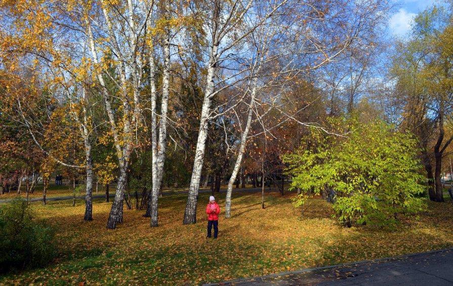 В парке - Павел Самарович