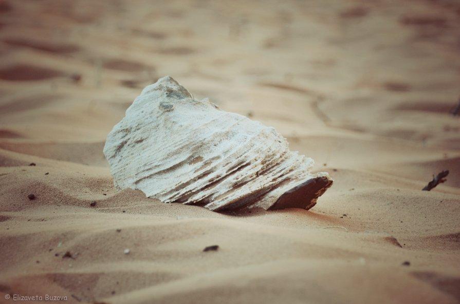 Дух пустыни - Lisa Buzova