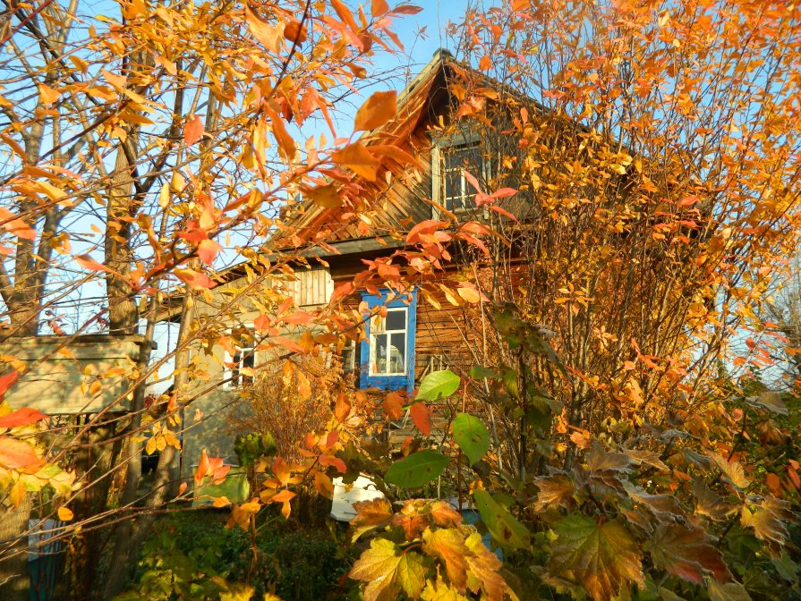 Осень - Анастасия Байрамалова