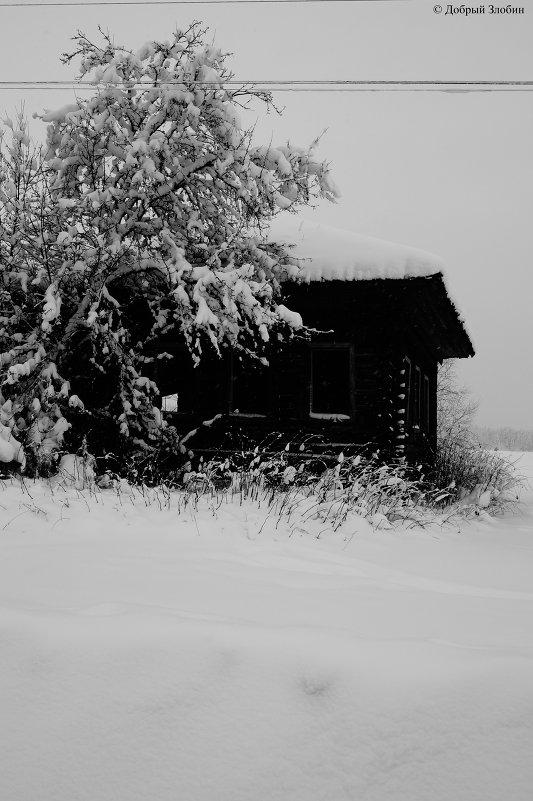 заброшенная деревня - Юрий Злобин