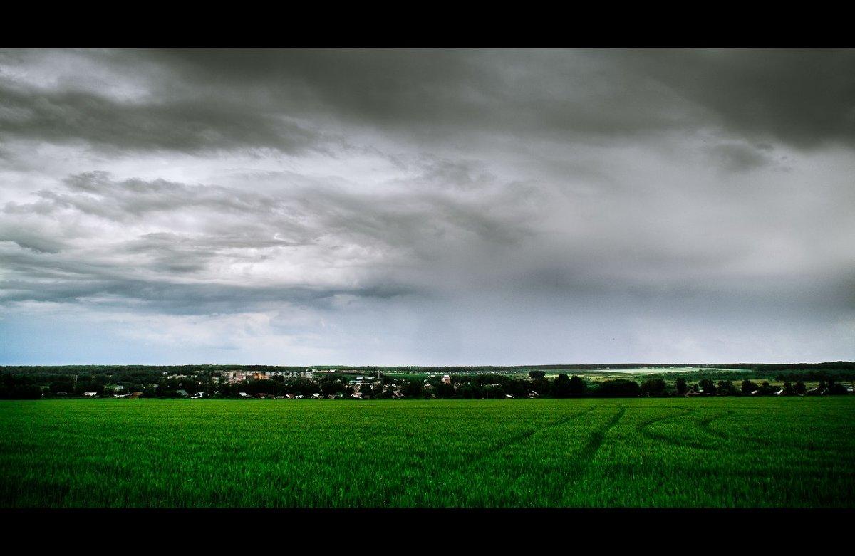 freedom - Андрей Ракита
