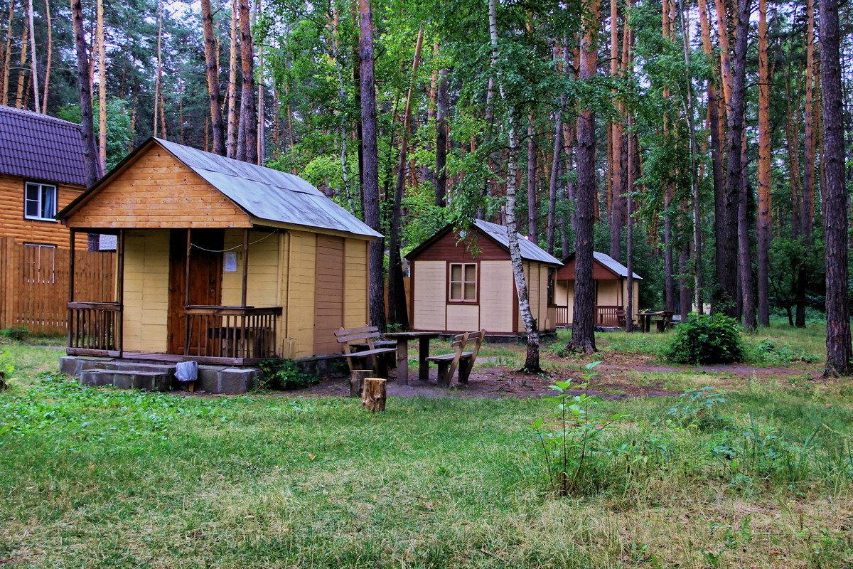 Рыбалка подмосковье домики в лесу