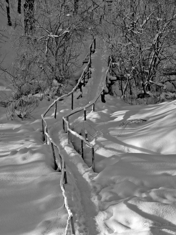 Зимняя тропа - Владимир Ноздрачев