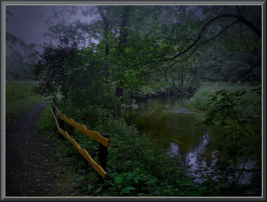 У сонной реки... - Диана Буглак
