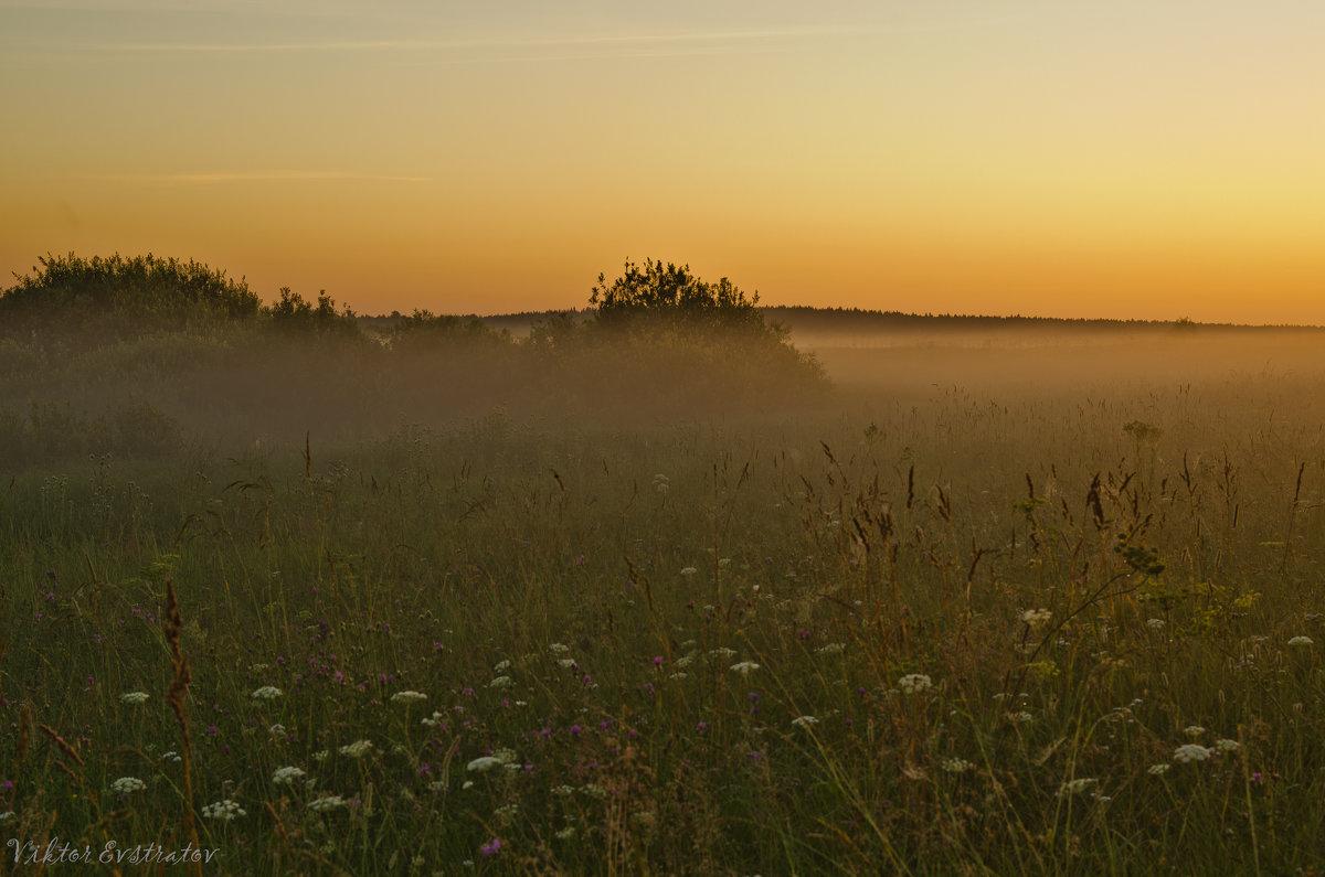 Восход над полем. - Виктор Евстратов