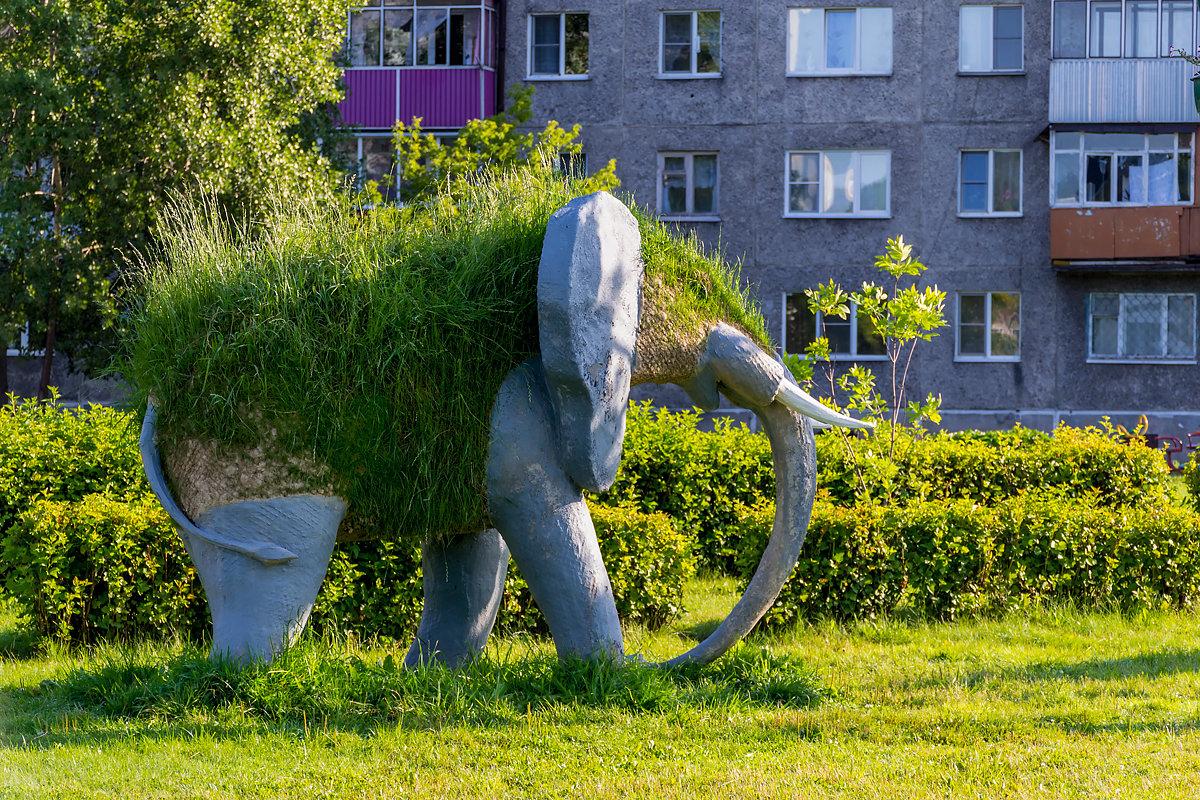 Наверное мамонт - Sergey Kuznetcov