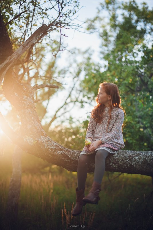 Рыжик - ребенок солнца - Olga Tarasenko