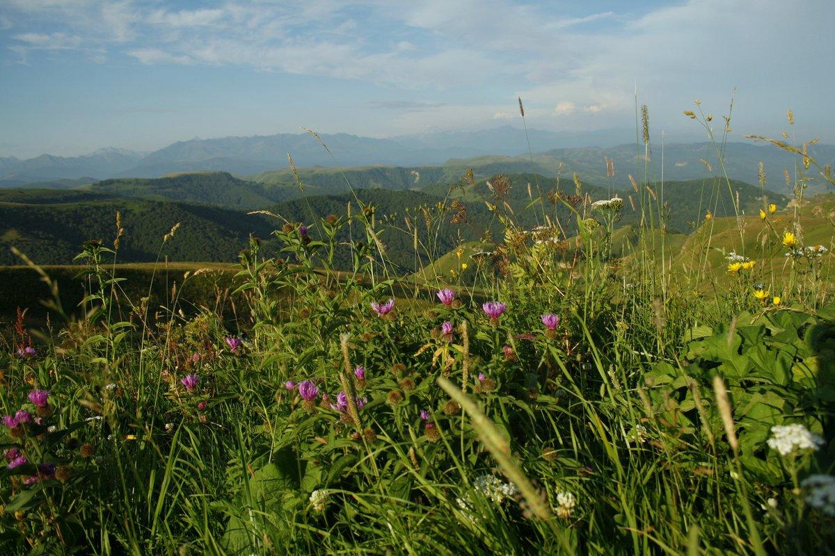 Красота гор - Serdechko (Лариса) Кальнина