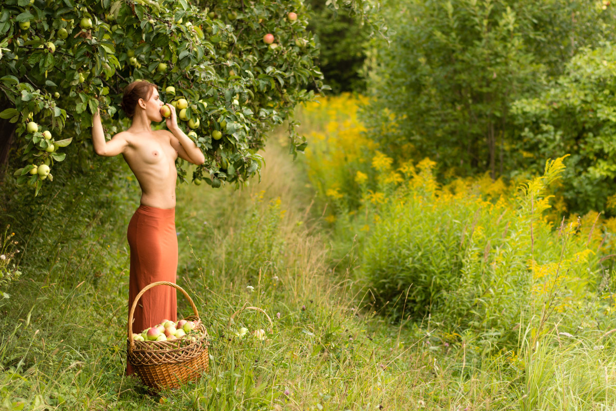 Девушка с корзиной - Илья