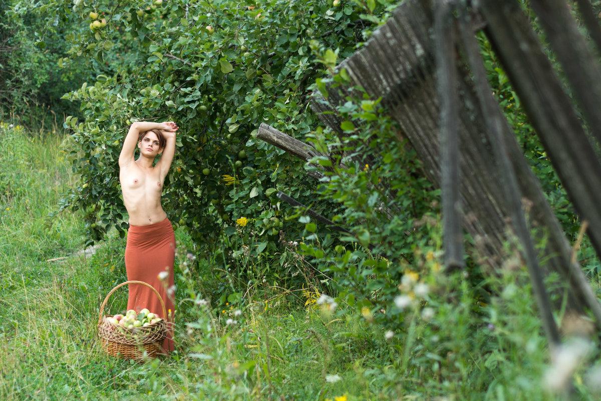 Девушка с корзиной 2 - Илья