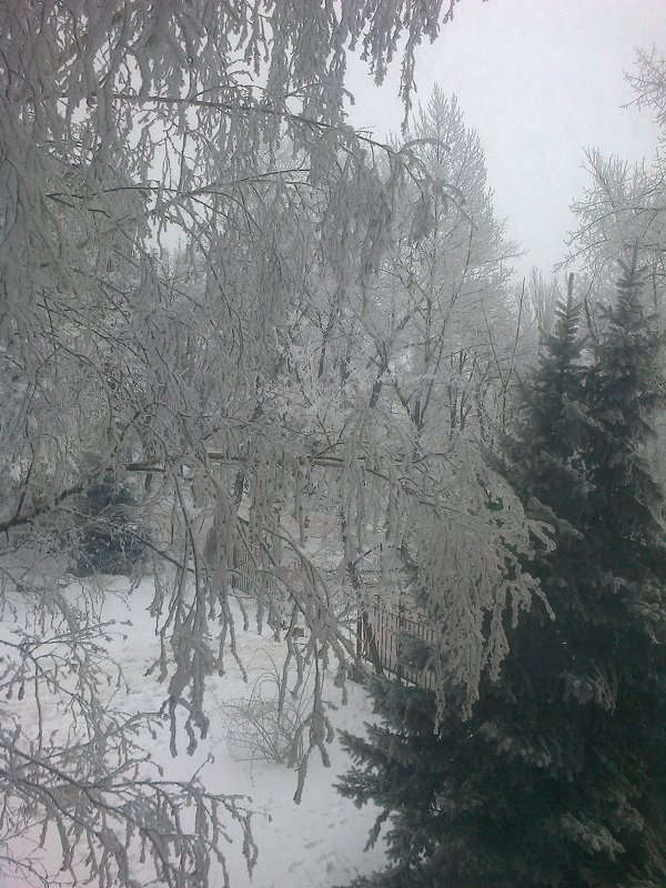 Из окошка моей комнаты - Valeriya Voice