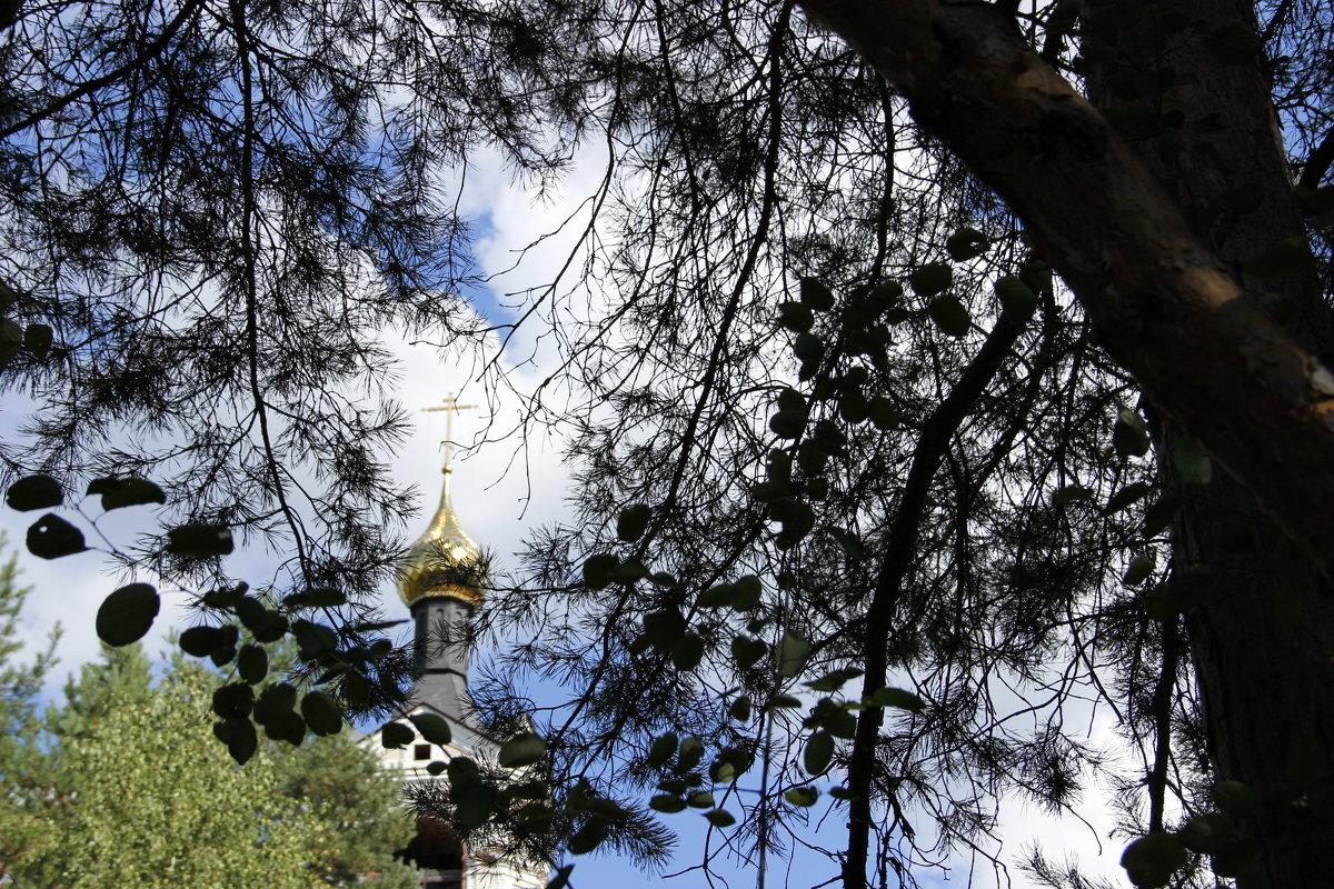 храм - Анна Борисова