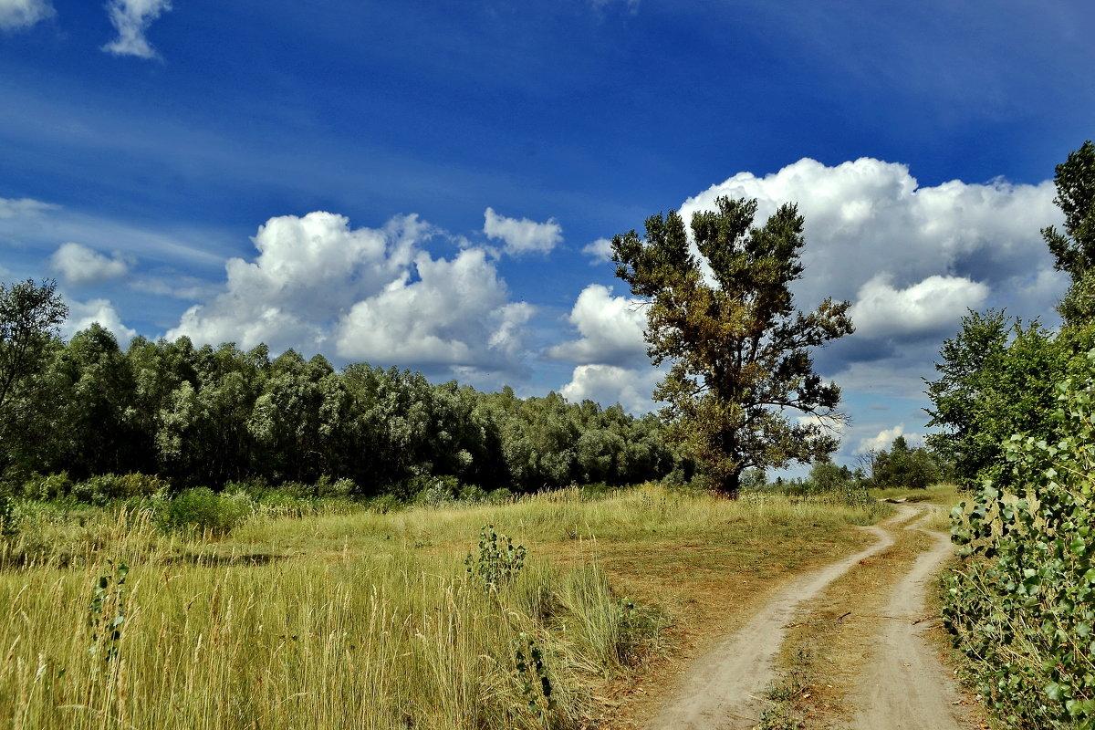 Дорога к облакам - Сергей S.Tulpan