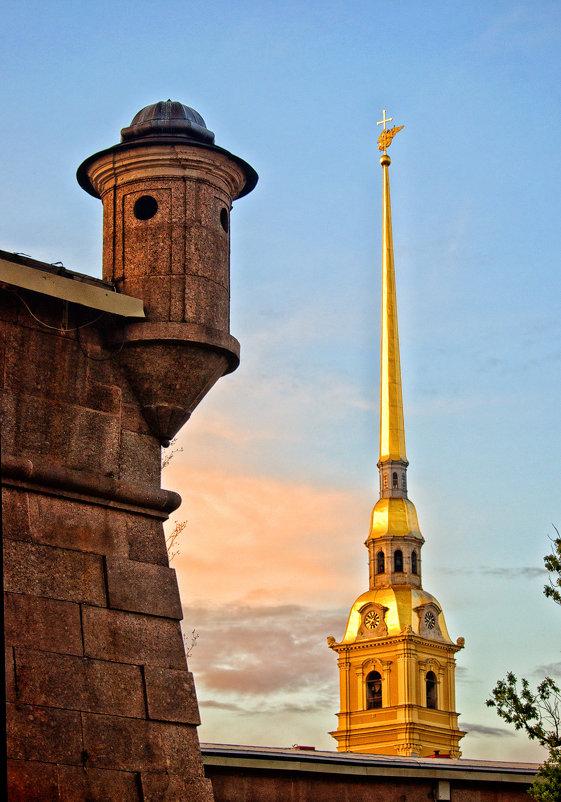 Шпиль и башня - Елизавета Вавилова