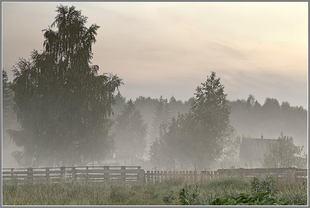 Вечерний туман... - Александр Смольников
