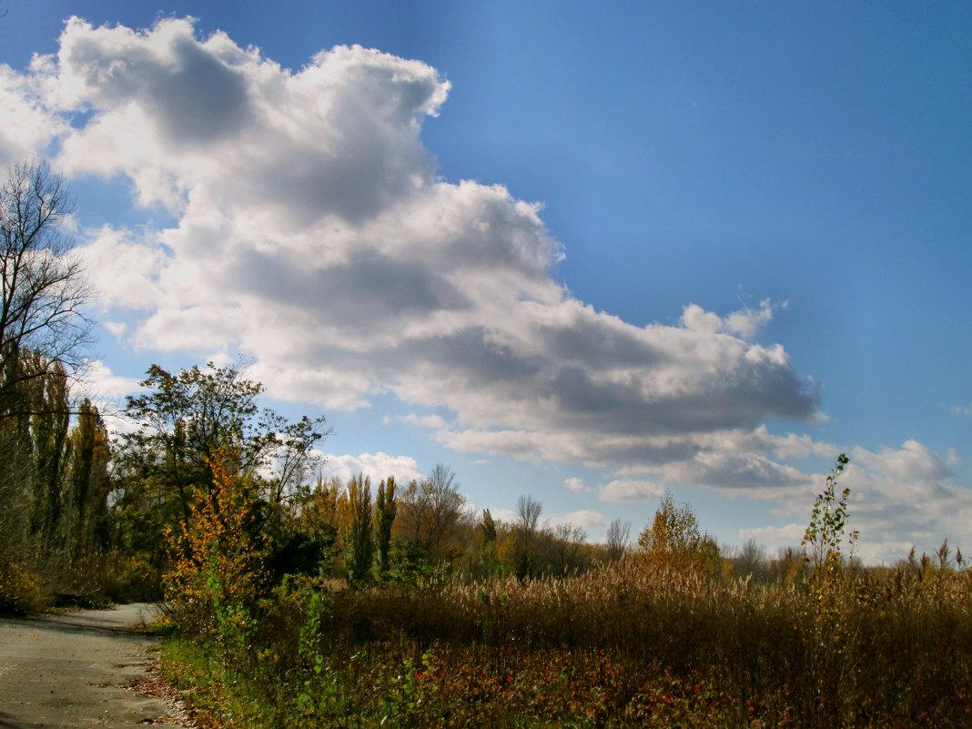 Осень... - Тамара (st.tamara)