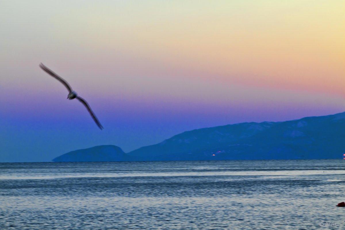 Призрак Чёрного моря - Геннадий Валеев