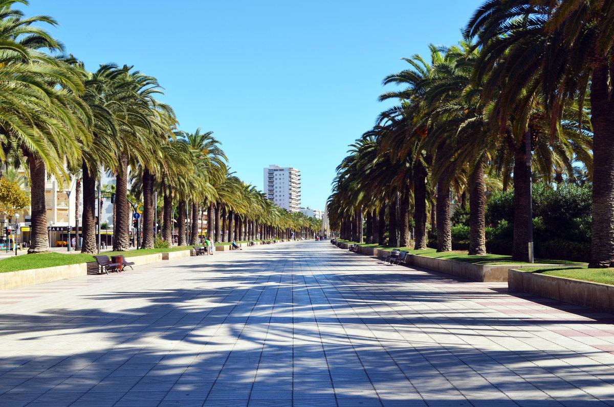 дорожка для прогулок Салоу,Испания - Анатолий