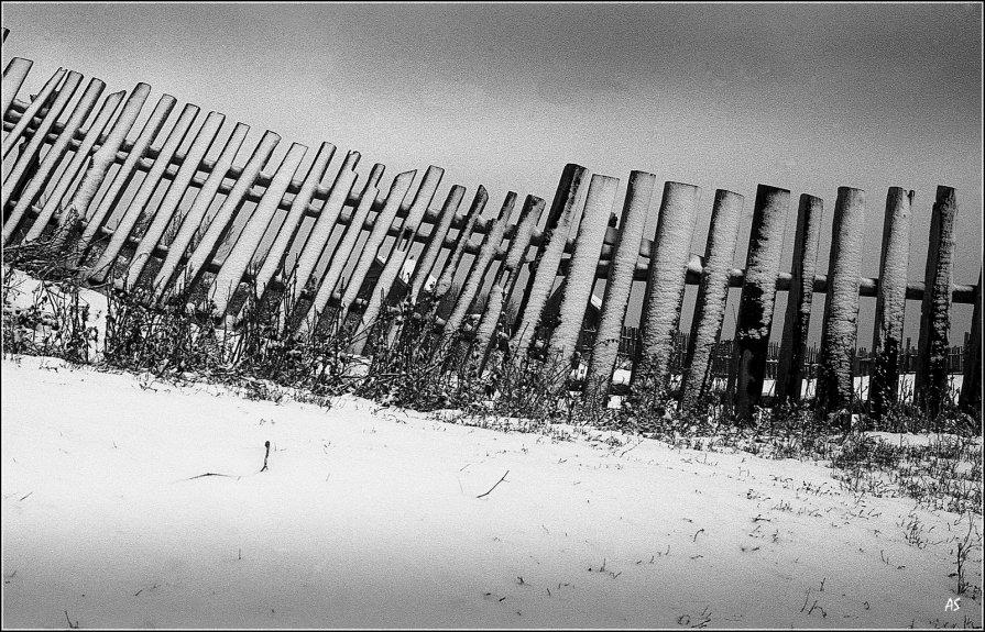 Начало зимы - Александр Семенов