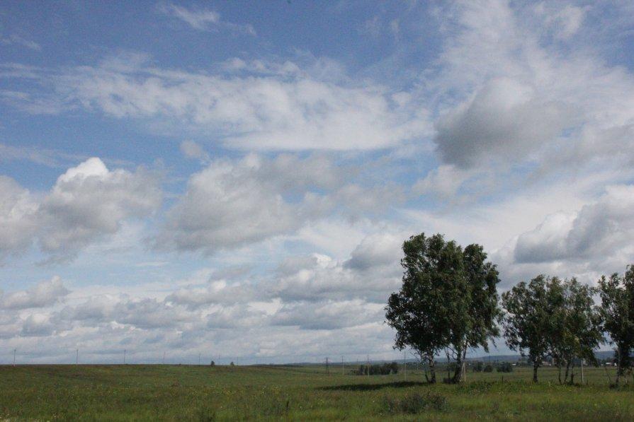 Русское поле - Алексей Тедеев