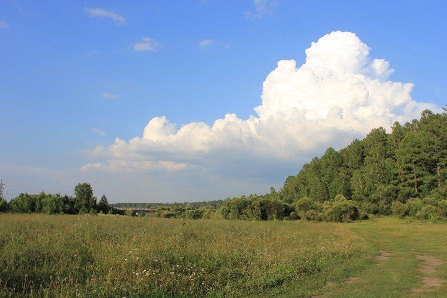 пейзаж - Алексей Тедеев