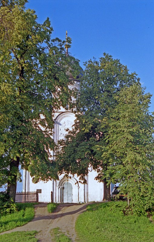 Храм Покрова на Нерли. - Яков Реймер