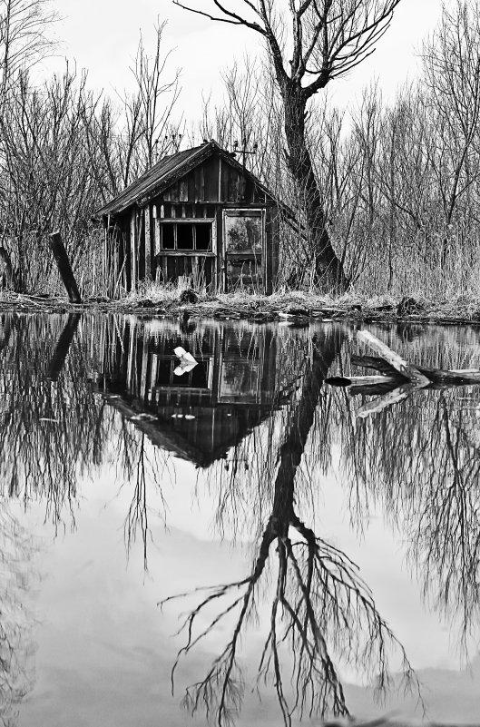 Заброшенный домик. - Frol Polevoy