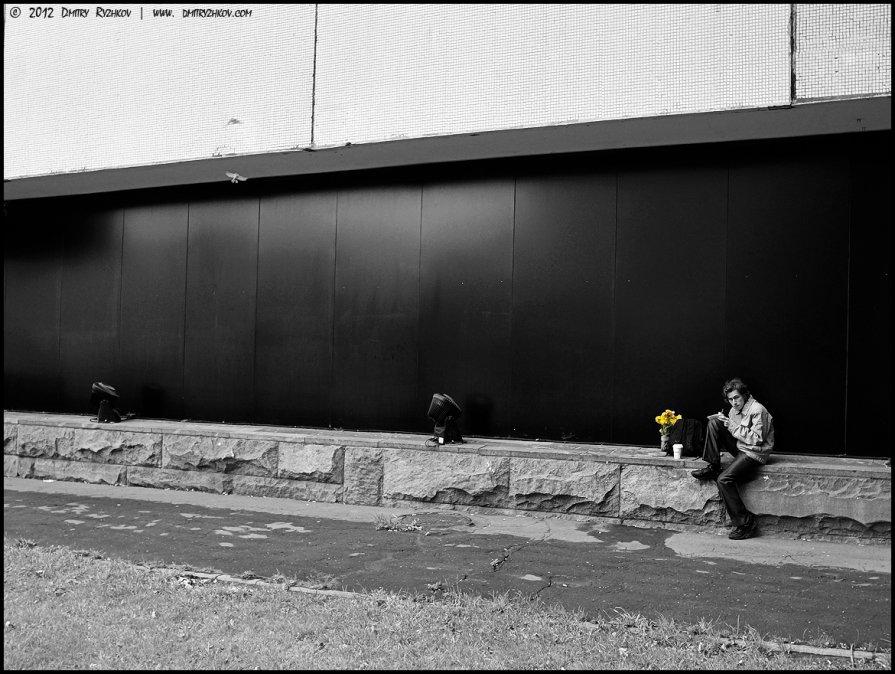 Желтые цветочки - DR photopehota