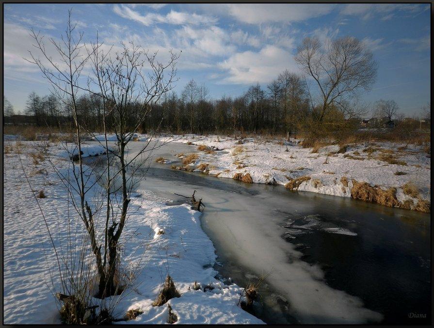 У зимней реки (1) - Диана Буглак