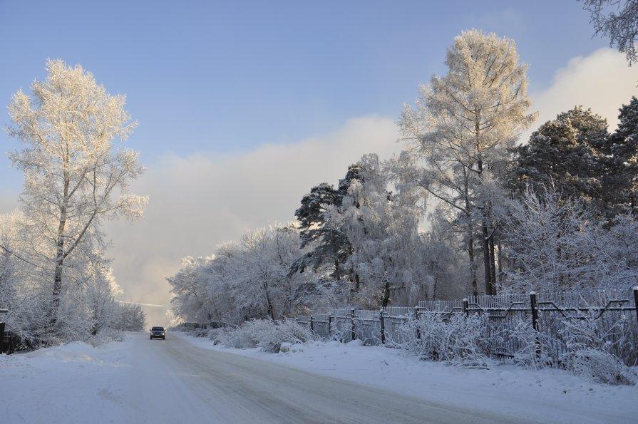 Зимняя дорога - Марина Демьяненко
