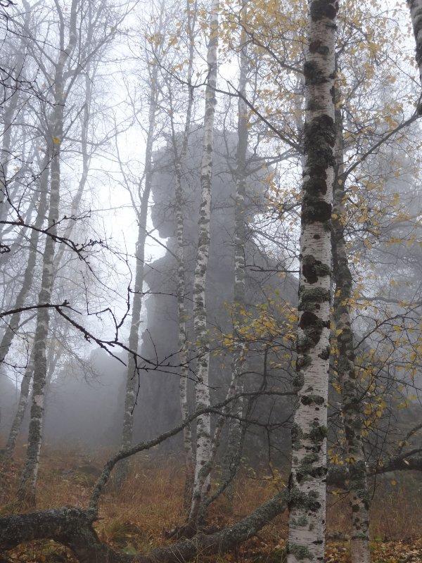 Страж в тумане. - Наталья Иванова