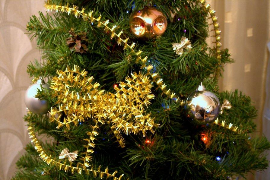 Моя елка - Наталия Зыбайло