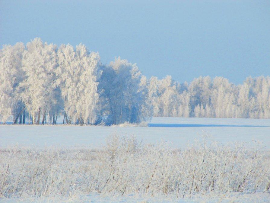 Зимнее утро - Димарик Лакман