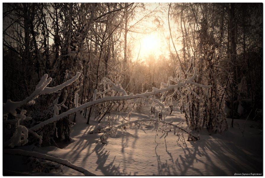 Предзакатное настроение - Сергей Бережко